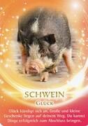 Das Schwein als Krafttier