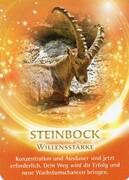 Der Steinbock als Krafttier