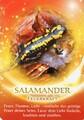 Der Salamander als Krafttier