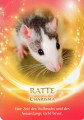 Die Ratte als Krafttier