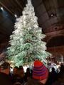 Weihnachtsbaum im Zürcher Hauptbahnhof (HB) 2018