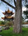 Pagode im Chinagarten Zürich