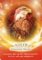 Der Adler als Krafttier