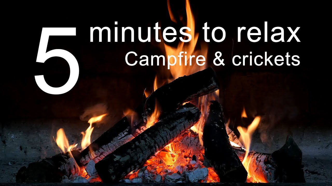 5 Minutes to Relax: Campfire and Crickets Ambience   Campfire Video with Crickets at Night (5014)