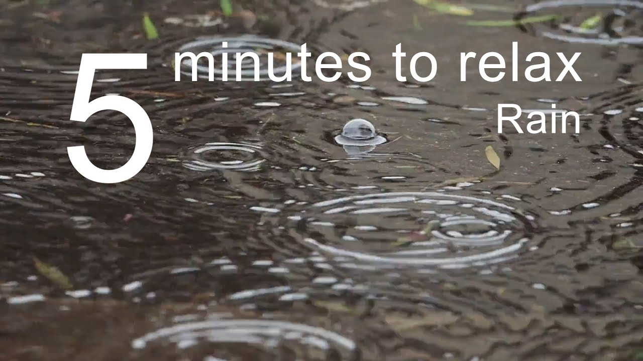 5 Minutes to Relax: Rain | Soothing Rain Sounds for Sleep, Relaxation, Meditation, Calm Down (5013)